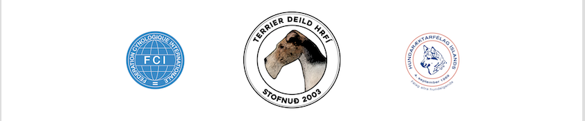Terrierdeild HRFÍ